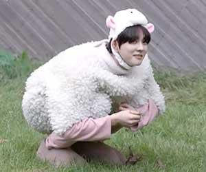 ジョンウォン, 羊, コスプレ